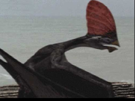 Tapejara reptile volant dinosoria - Dinosaur volant ...